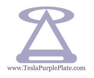 logo tesla purple plates e-commerce